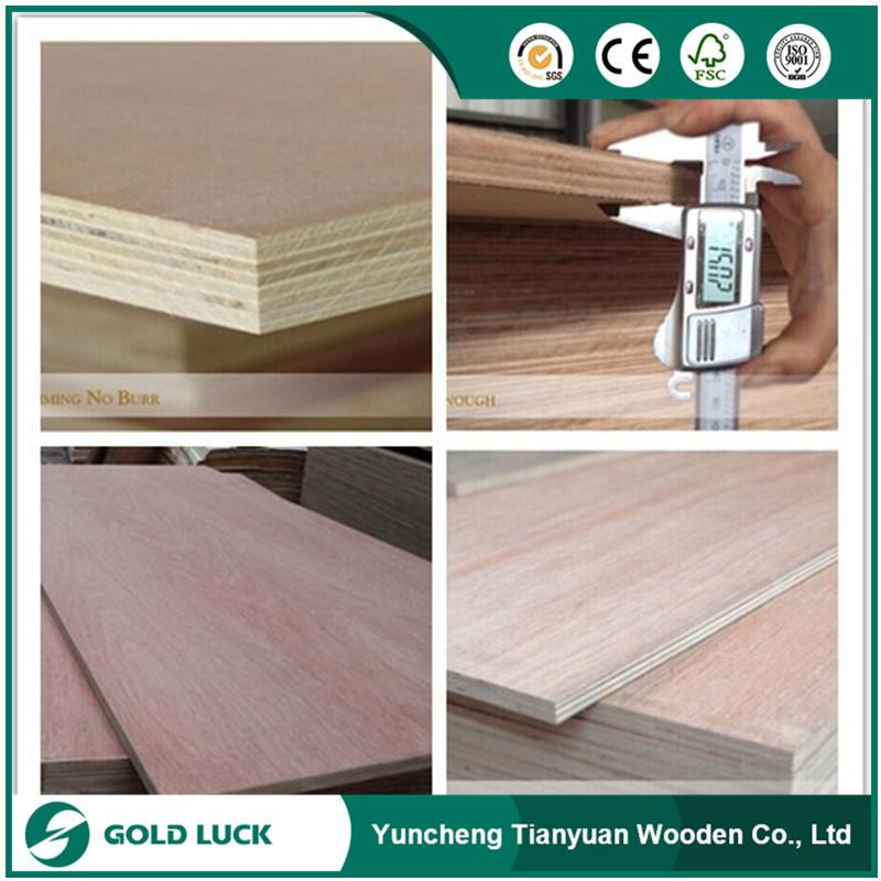 Okoume/ Bintangor/ Red Pencil Cedar Commercial Plywood