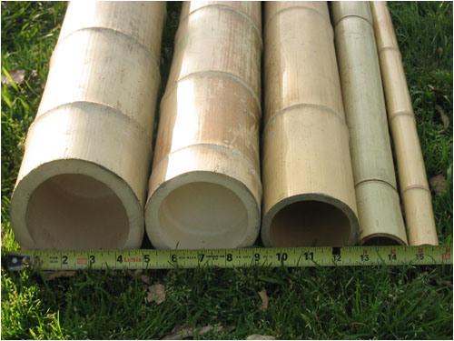 China bamboo poles bamboo lumber china bamboo poles bamboo lumber