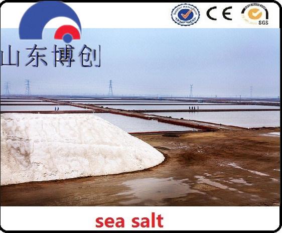Sodium Chloride Type and Industrial Grade Grade Standard Sodium Chloride