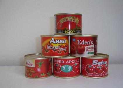 Canned Tomato Paste