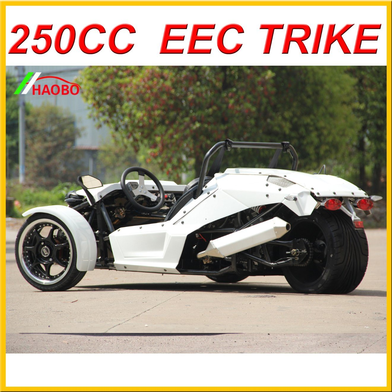 2017 Ztr Trike Roadster 250cc for Dults
