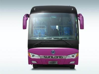 Sunlong Slk6118A6n Nautral Gas Passenger Bus