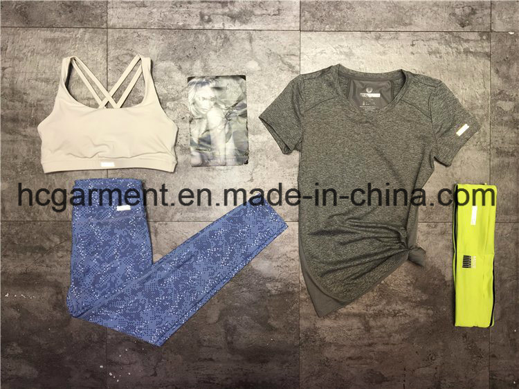 Quickly Dry Running Clothing of Women/Lady, Fitness Wear, , Sports Suit