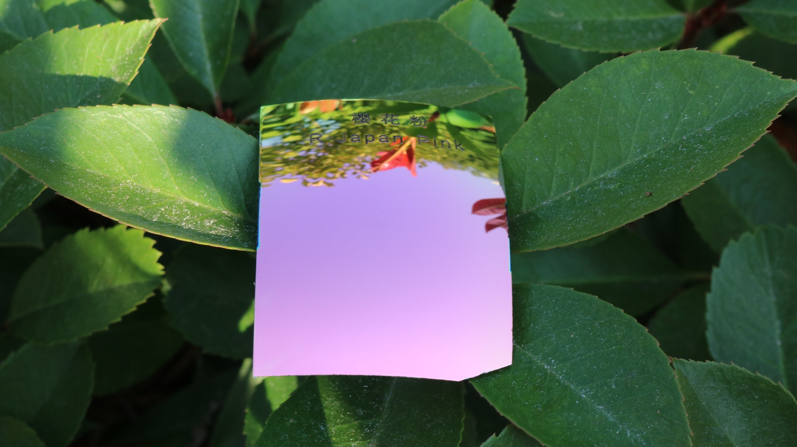 Fashion Sunglasses Polarized Tac Lens Repalcement Lens (R Japan Pink)