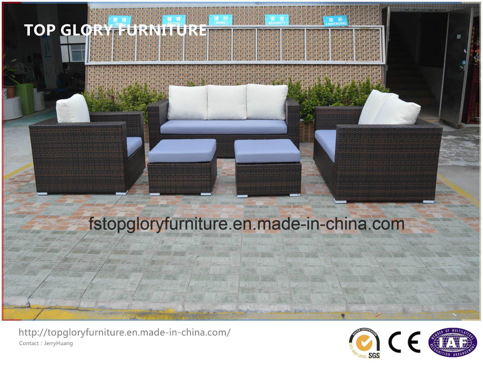 Modern Garden Furniture Wicker/Rattan Sofa (TG-7001)