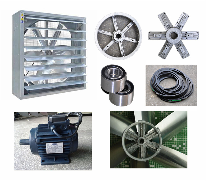 Chicken Poultry Farm Equipment /Poultry Farm House Ventilation Design
