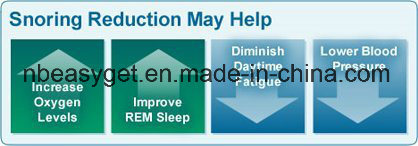 Anti Snoring Jaw Strap Supporter Stop Snoring Sleep Aid W/Bonus Sleep Success Program Anti Snoring Jaw Strap Supporter Stop Snoring Sleep Aid