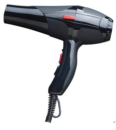 Ac motor professional hair dryer xr r8809 china ac for Ac motor hair dryer