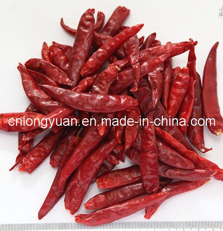 Dried Red Chili, Paprika Pods, Hot Chili