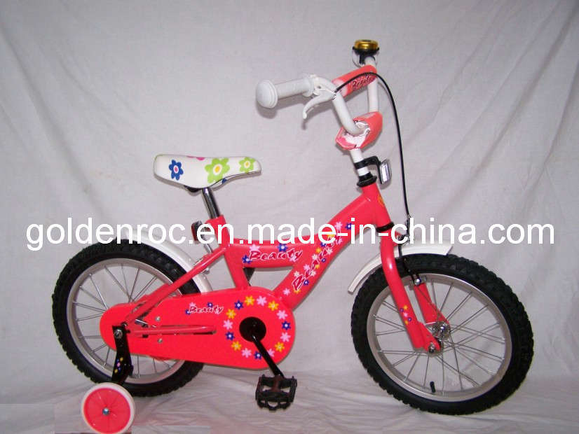 "16"" Steel Frame Kids Bike (1638B)"