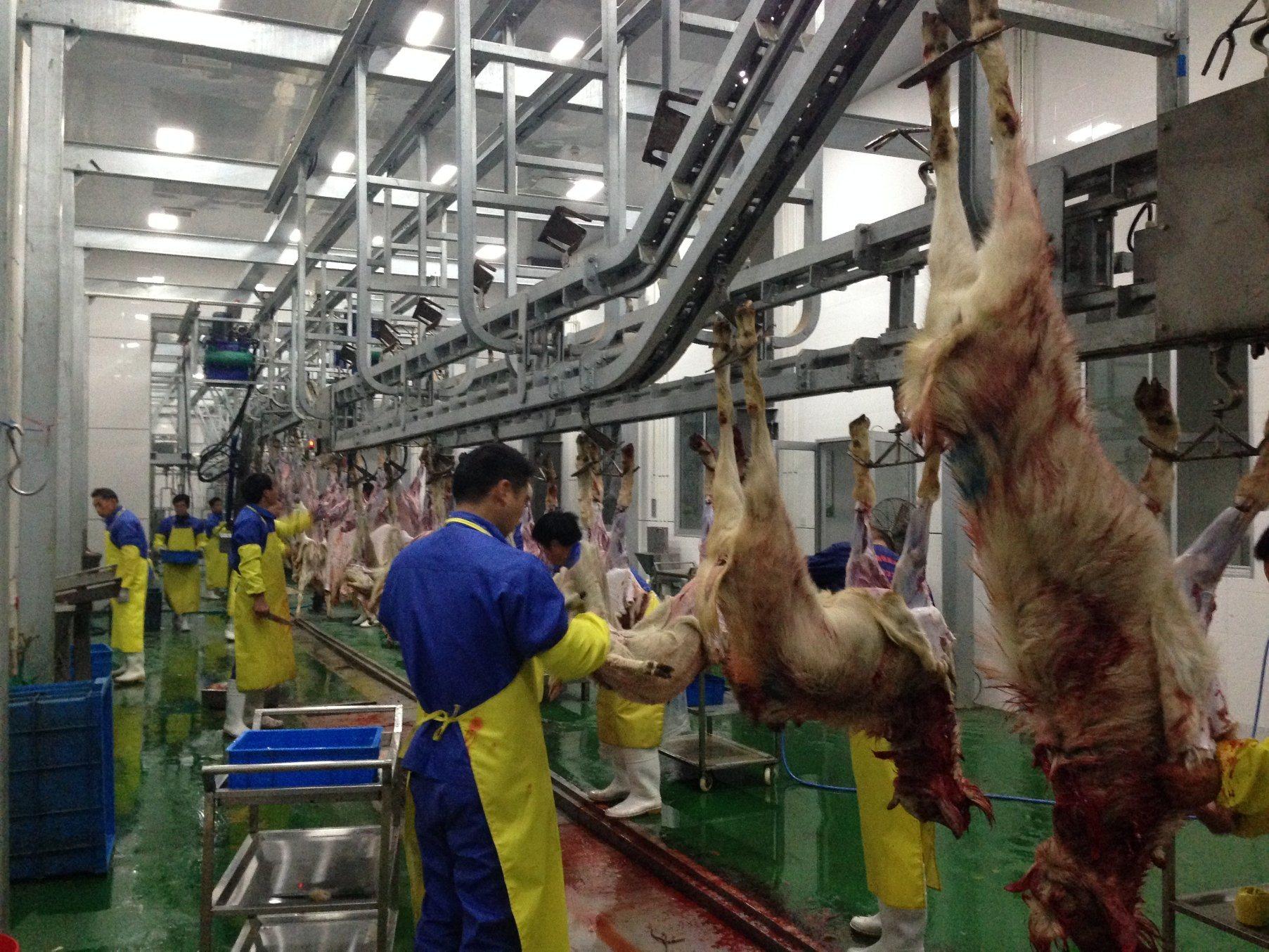Goat Slaughterhouse