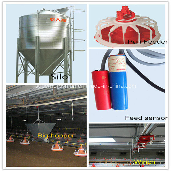 High Quality Poultry Feeding Equipment