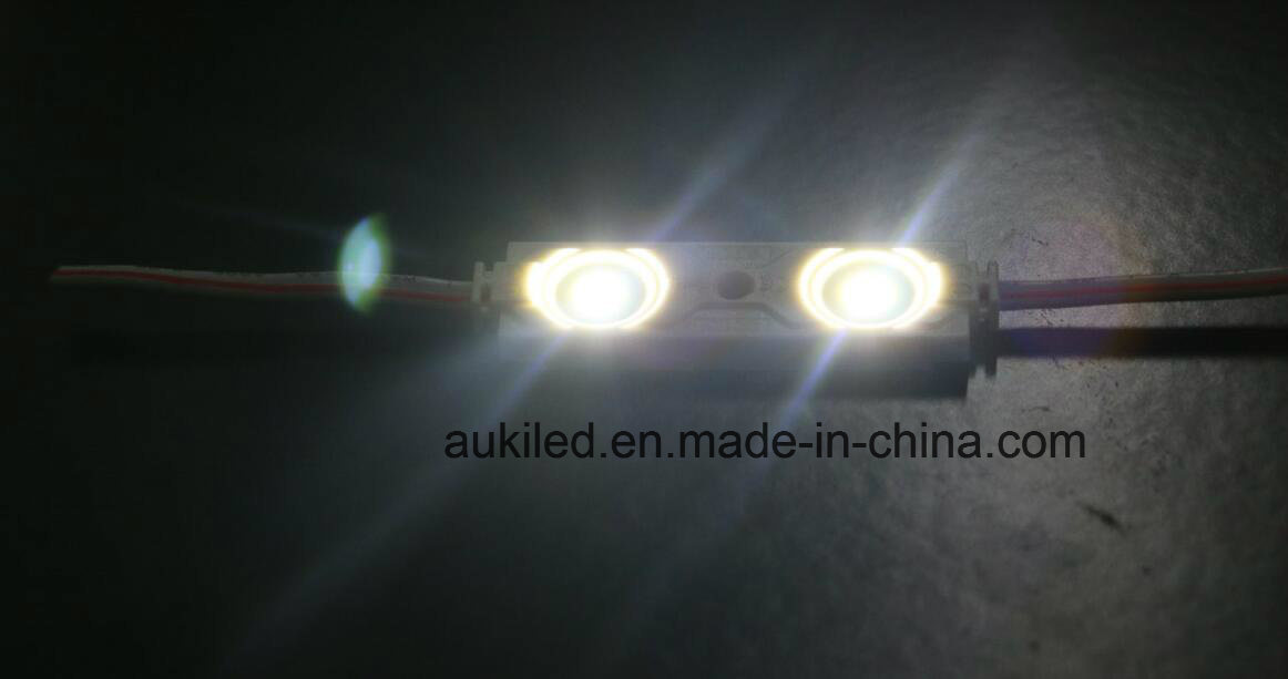 2-LEDs SMD2835 IP65 Module with 3 Years Warranty
