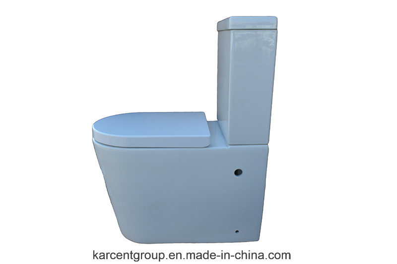 Two Piece Ceramic Toilet Washdown Toilet Water Closet Wc 10118