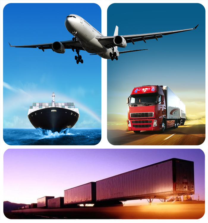 Cargo Logistics Service From Guangzhou to Nhava Sheva