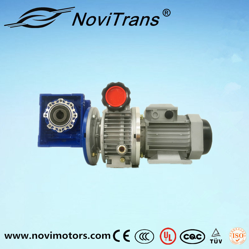 0.75kw AC Flexible Motor with Speed Governor and Decelerator (YFM-80A/GD)