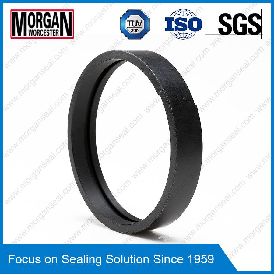 Fa Profile PTFE/Teflon/PA/POM Piston Guide Ring/Wear Ring