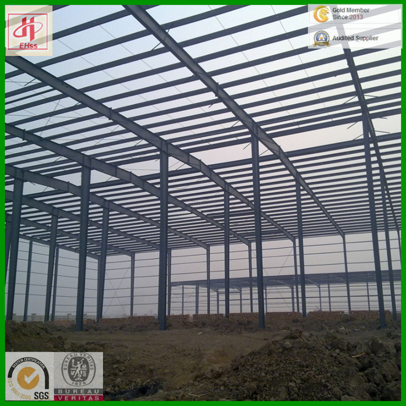 Steel Buildings Industrial with SGS Standard Made in China (EHSS024)