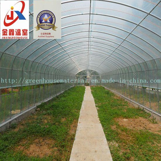 Agricultural Common Used Inserted Greenhouse