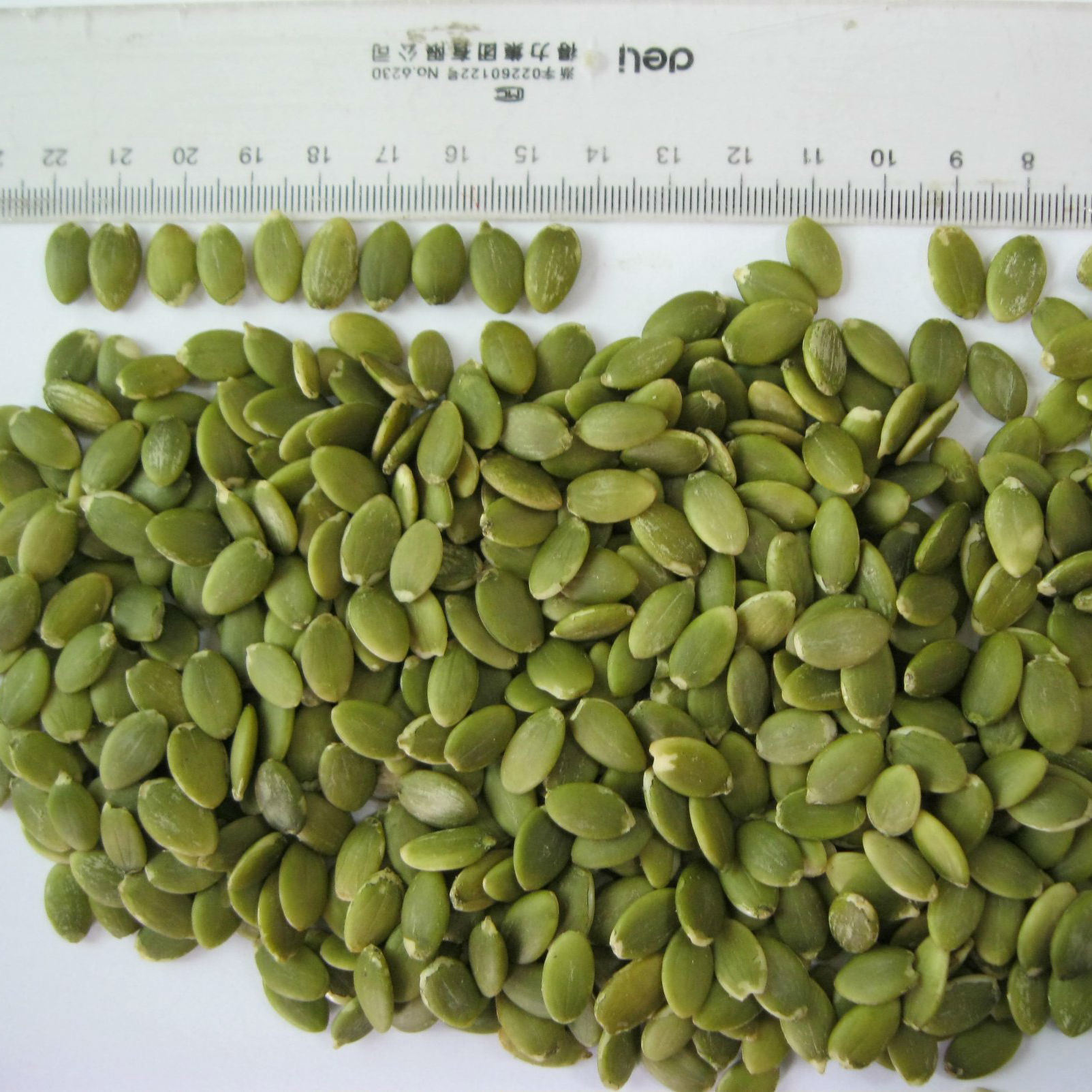 Hot Sale Shine Skin Pumpkin Seed Kernels From Shandong Guanghua