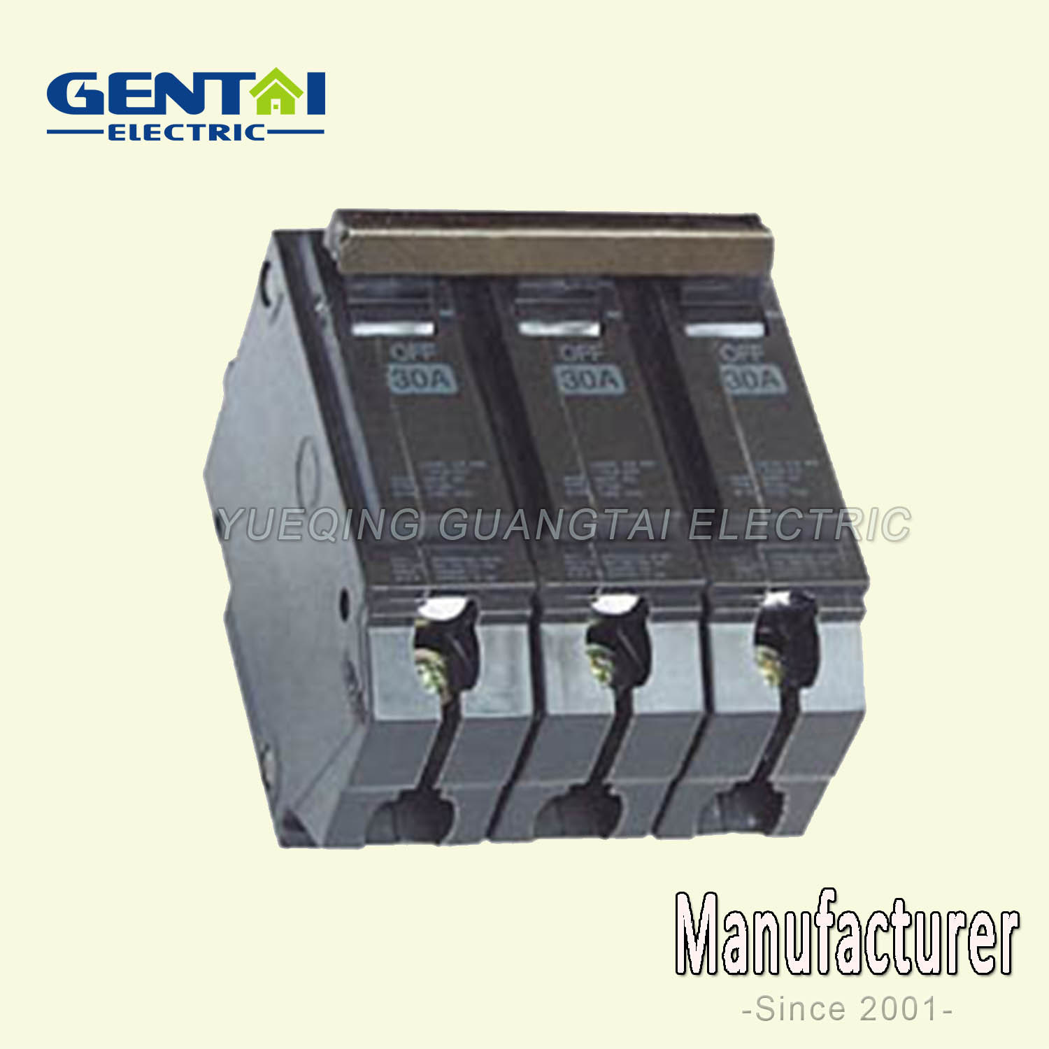 High Quality Thql Type Plug in Circuit Breaker
