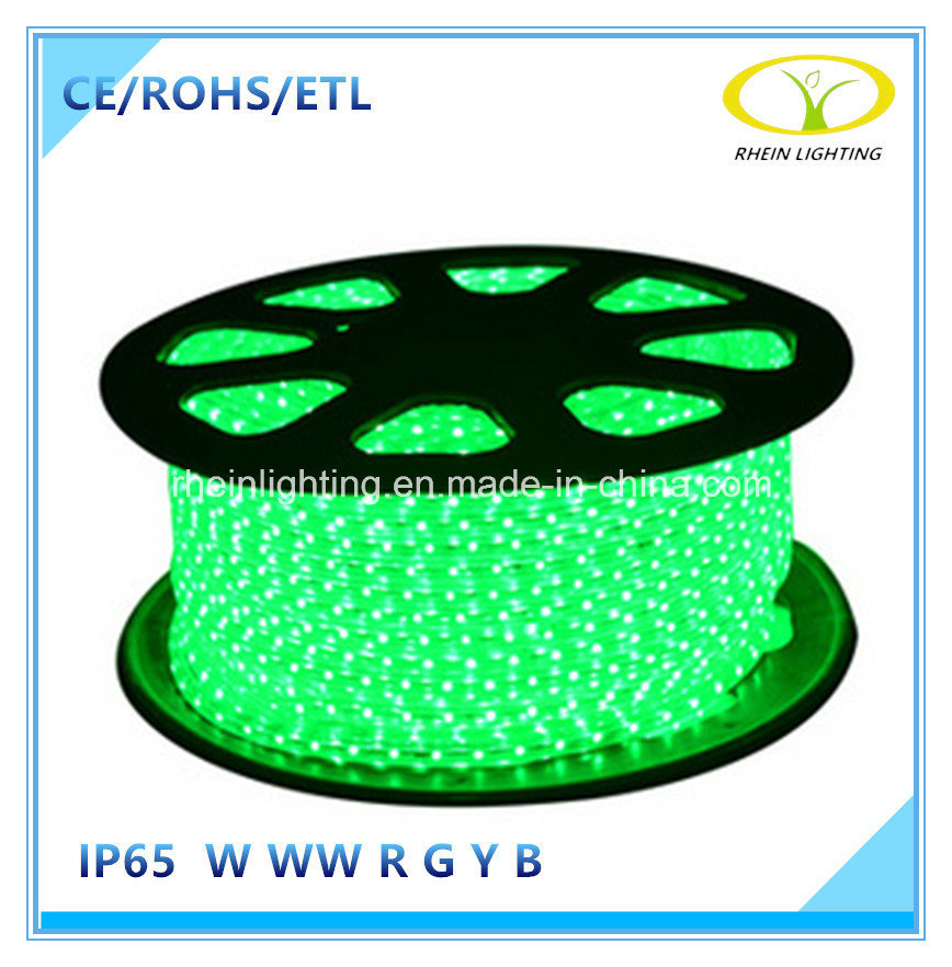 120V Outdoor IP65 Flexible LED Strip Light with ETL Certification