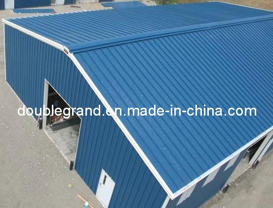 Prefabricated Steel Structure Building (DG3001)