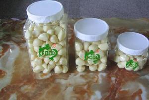 Fresh Peeled White Garlic for Export
