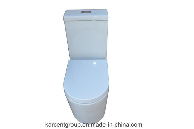 Two Piece Ceramic Toilet Washdown Toilet Water Closet Wc 10118