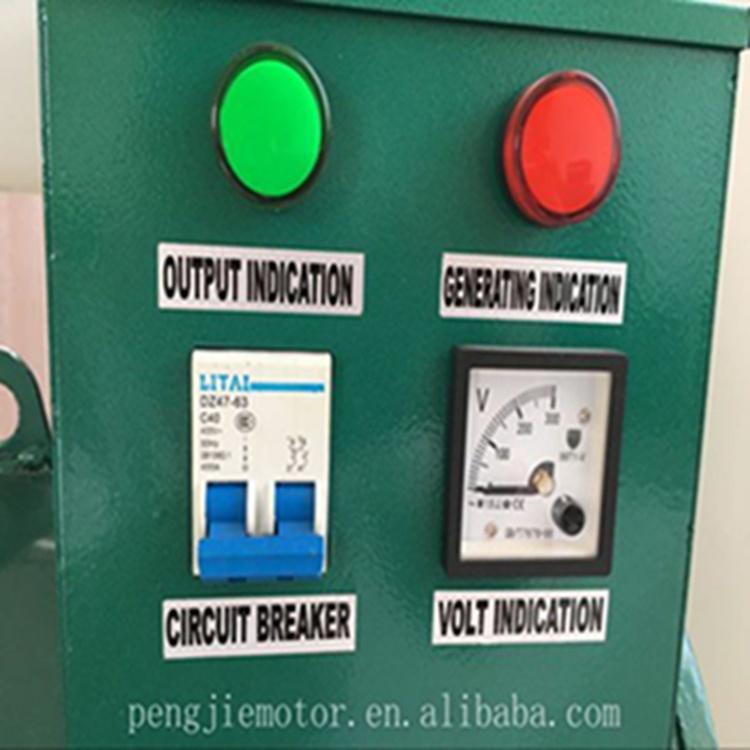 Tfw 20kw Alternator 25kw Single Phase Generator Factory Alternator with AVR