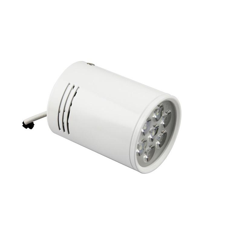 Cylinder LED Down Light with Light Direction Adjustable