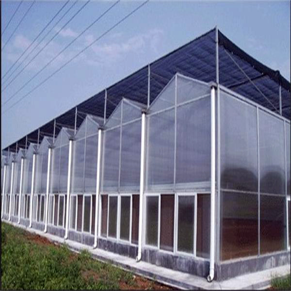Commercial Agricultural Multi-Span PC Sheet Greenhouse