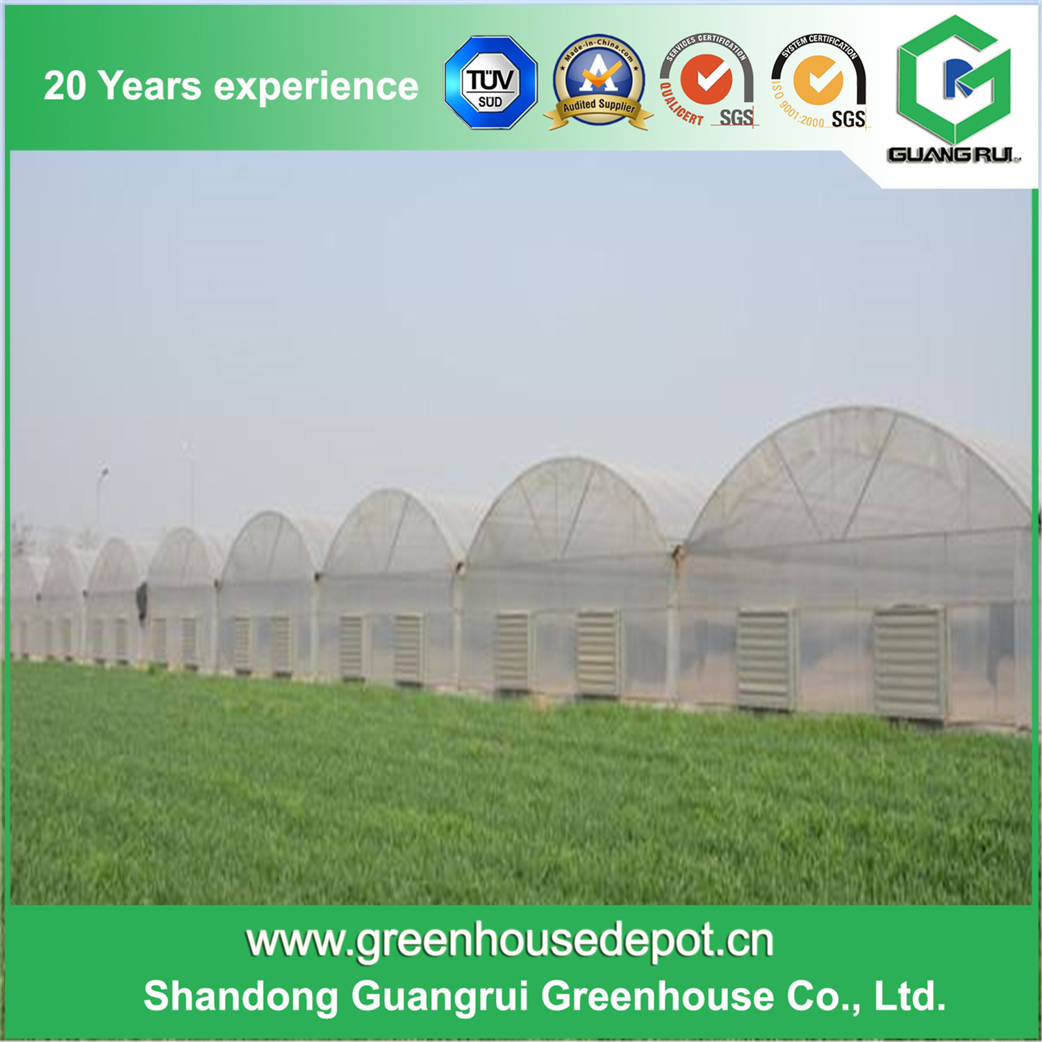Multi-Span Tunnel Film Greenhouse