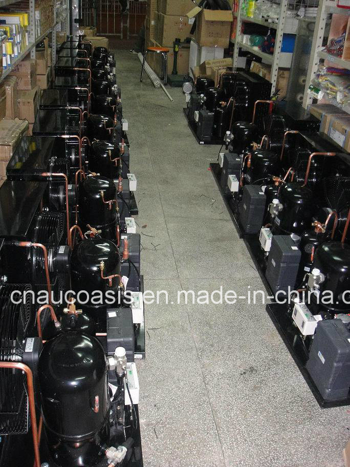 France Brand Tecumseh Condensing Units for Cold Storage