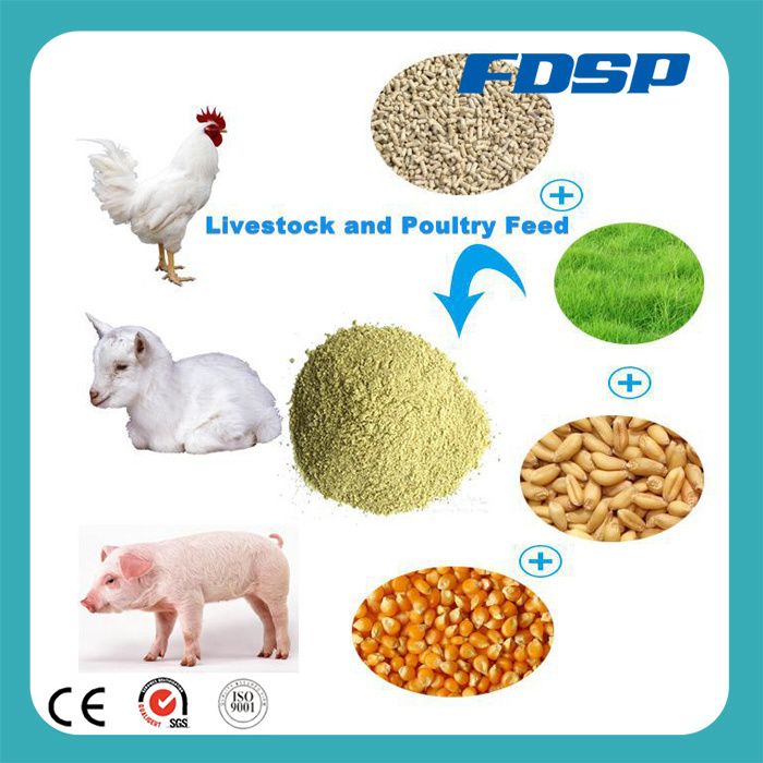 CE Approved Ring Die Animal Feed Pellet Mill