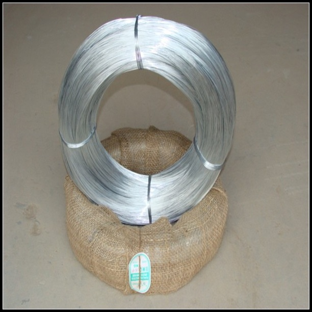 Hot-Dipped and Electro Galvanized Wire