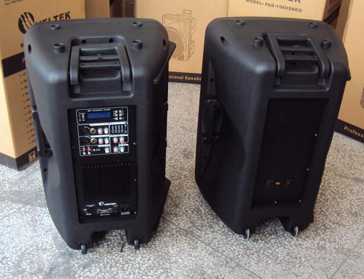 "12"" 2-Way Active/PA Speaker Box/Plastic Speaker/Cabinet"