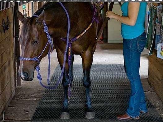 Horse Rubber Mat Animal Rubber Mat Cow Horse Mat