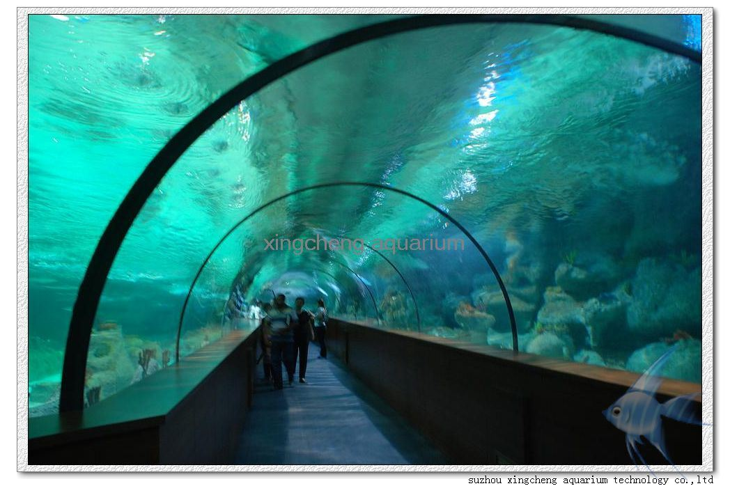 China Acrylic Aquarium Tunnel Photos Pictures Made In