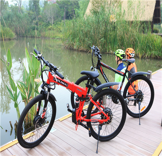 Fashion Electric Bike Electric Mountain Bike