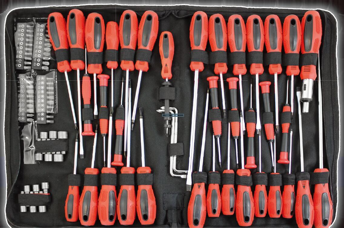 Hot Sale-100PCS Screwdriver Hand Tool Kit (FY1100B-1)