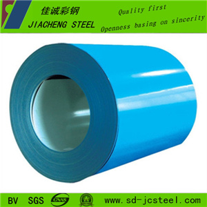 China Competitive Prepainted Galvanized Steel Coil for Roof Panel
