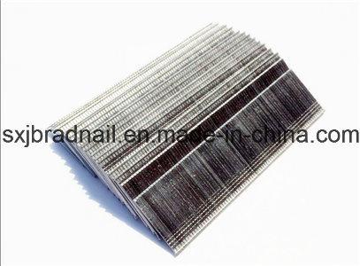 Brad Head Nails/Furniture Iron Nails Factory
