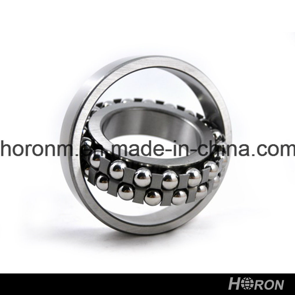 Self-Aligning Ball Bearing (1304 ETN9)