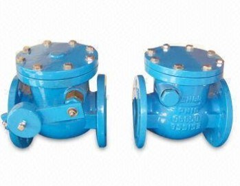 Domestic Water Systems Used Non Return Valve