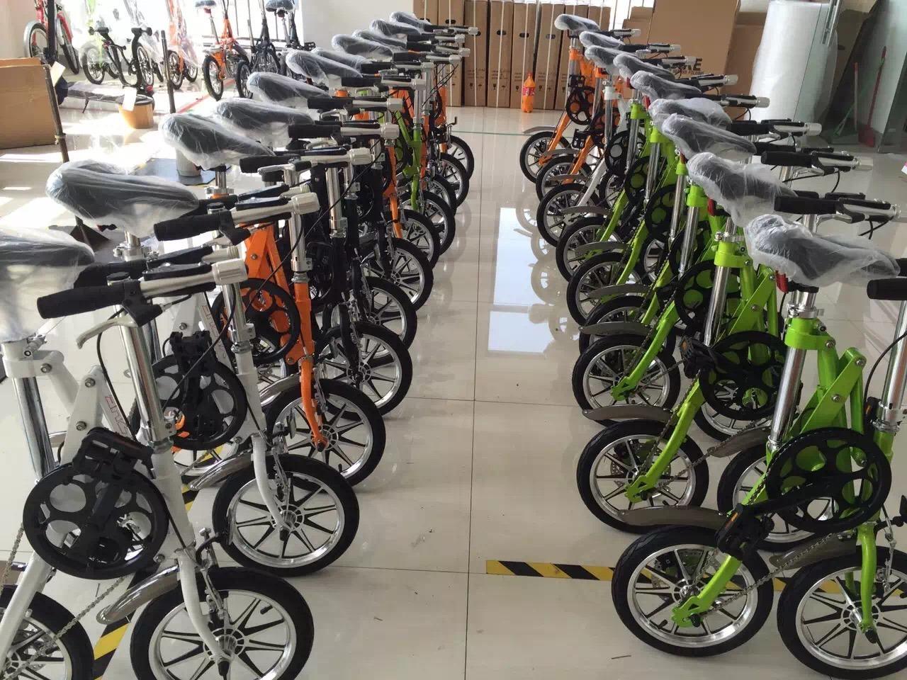 14inch Carbon Steel Folding Bike