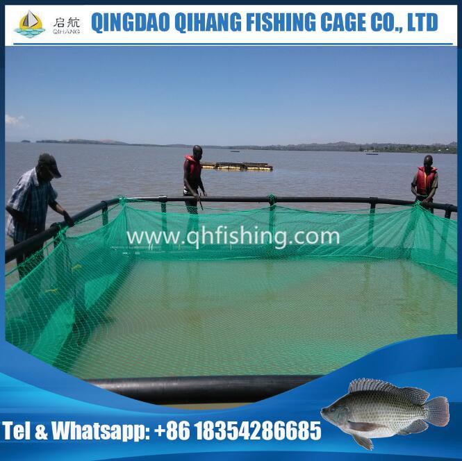 Tilapia Fish Farming Cage for Uganda Market