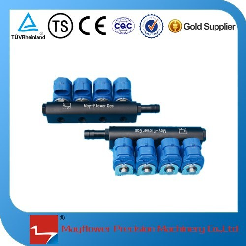 CNG Common Rail Fuel Injector (4 cylinder)