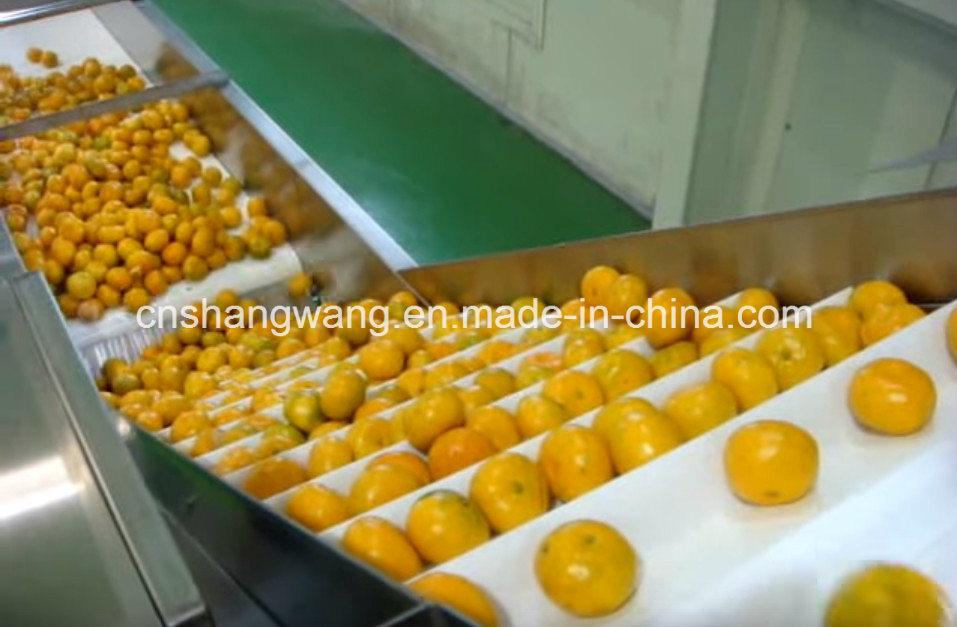 Complete Orange Juice Production Line