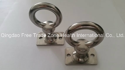 Ss Eye Bolt with T Nut